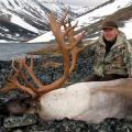 Mountain Caribou Hunts