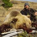 Grizzly & Black Bear • Wolf & Lynx